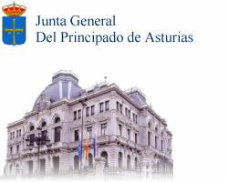 LA ADMINISTRACIÓN INCUMPLE EL MANDATO DE LA JUNTA GENERAL DEL PRINCIPADO DE ASTURIAS